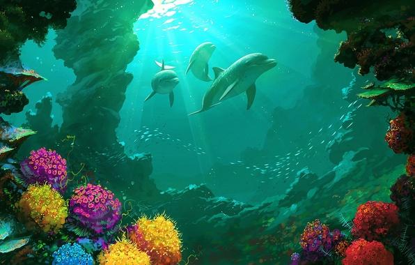 Картинка море, вода, пейзаж, красота, рыба, кораллы, art, dolphin, рифы