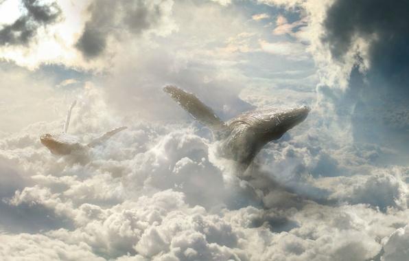 Атмосфера небеса тучи обои фото