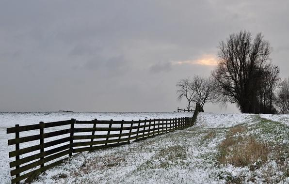 Картинка зима, иней, поле, небо, деревья, забор, серое