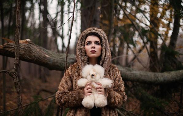Картинка лес, девушка, игрушка, мишка