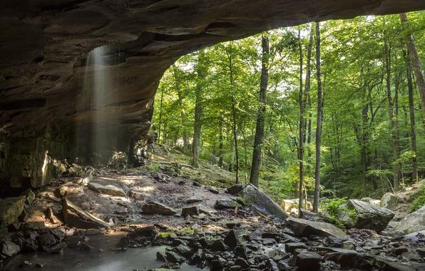Картинка зелень, лес, деревья, скала, камни, водопад, арка, Arkansas, Glory Hole Falls