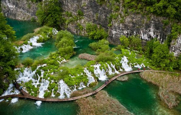 Картинка зелень, скала, озеро, тропики, растительность, водопад, мостик, Croatia, Natur, Плитвицкие озера, Plitvice Lakes, National Park …