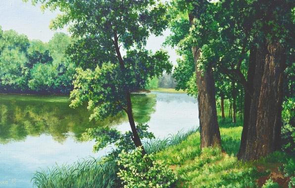 Картинка лес, лето, трава, вода, деревья, озеро, отражение, камыши, картина, живопись, прохлада, Луценко