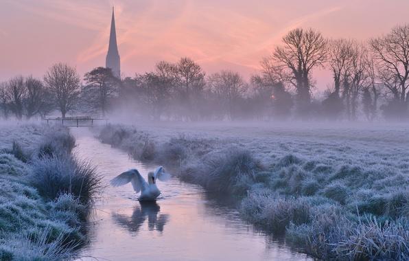 Картинка зима, иней, небо, деревья, закат, туман, река, птица, Англия, вечер, собор, Великобритания, лебедь, оранжевое