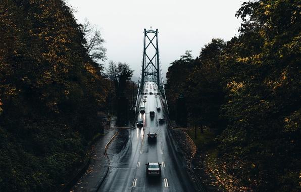 Картинка дорога, осень, деревья, машины, мост, город, мокрая