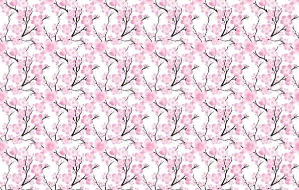 Картинка цветы, ветки, вишня, сакура