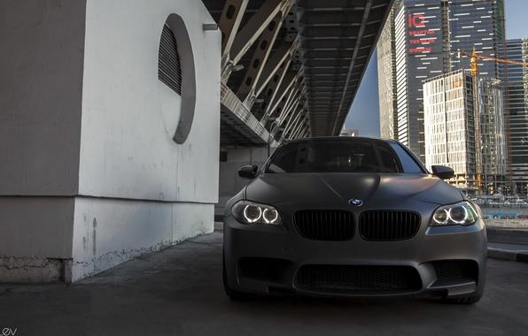 Картинка машина, BMW, БМВ, фотограф, перед, решётка, auto, photography, photographer, Alex Bazilev, Александр Базилев, Alexander Bazilev