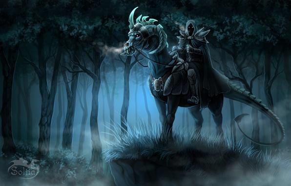 Картинка лес, взгляд, ночь, фантастика, арт, капюшон, всадник, броня