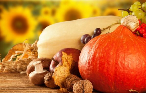 Фото обои яблоко, тыква, калина, фрукты, сухие листья, овощи, грибы