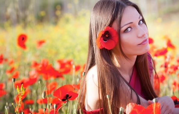 Картинка лето, глаза, взгляд, девушка, цветы, природа, лицо, волосы, маки