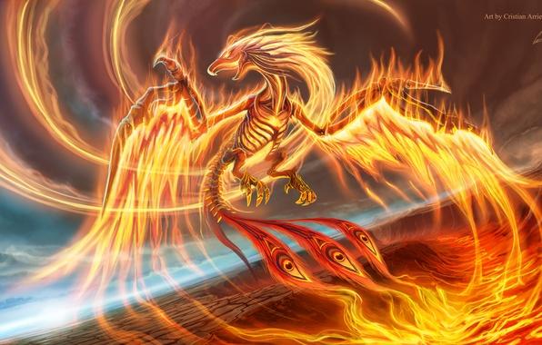 Картинка полет, птица, крылья, клюв, хвост, феникс, phoenix