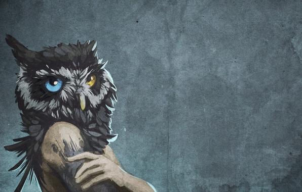 Картинка фон, стена, сова, птица, рисунок, человек, голова, арт, разные глаза