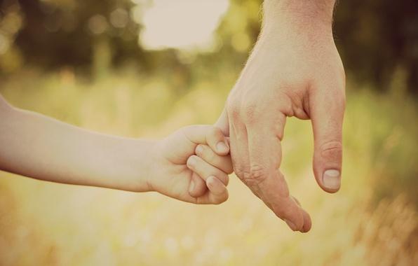 Картинка лес, трава, любовь, радость, счастье, дети, уверенность, молодость, безмятежность, девочки, спокойствие, рука, фокус, защита, руки, …