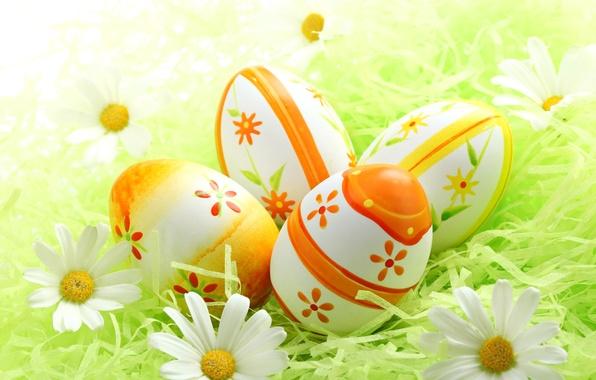 Картинка трава, цветы, ромашки, яйца, весна, пасха, grass, sunshine, flowers, spring, eggs, easter, daisy, meadow, camomile