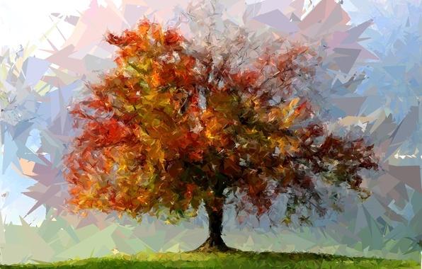 Фото абстракция дерево цвета фигуры