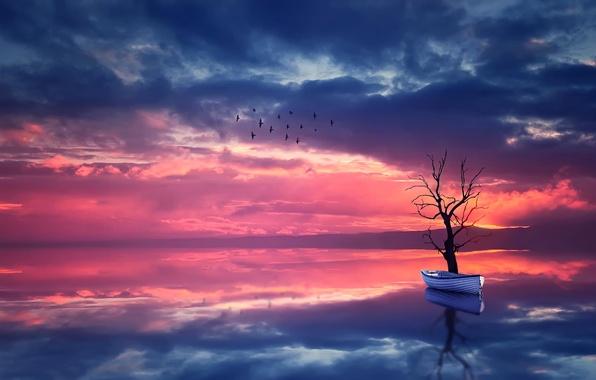 Картинка небо, вода, пейзаж, закат, птицы, природа, отражение, дерево, лодка