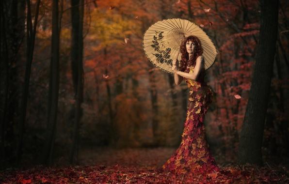 Картинка листья, девушка, зонт