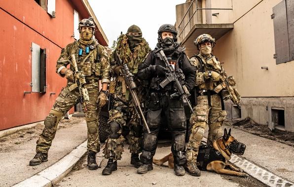 Картинка оружие, собака, Norwegian Special Forces