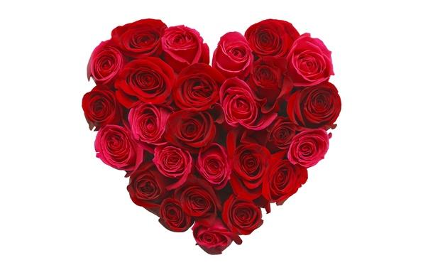 Картинка цветы, сердце, розы, love, бутоны, heart, romantic, roses