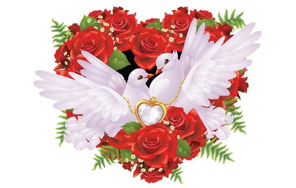 голуби и любовь картинки