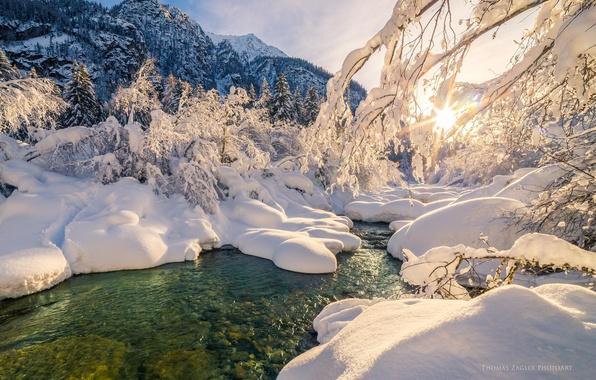 Картинка зима, лес, вода, солнце, снег, деревья, река, ручей, forest, Winter, river, sky, trees, nature, water, …