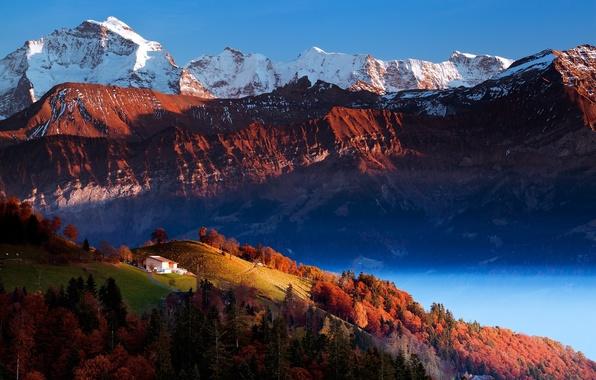 Картинка деревья, горы, природа, долина