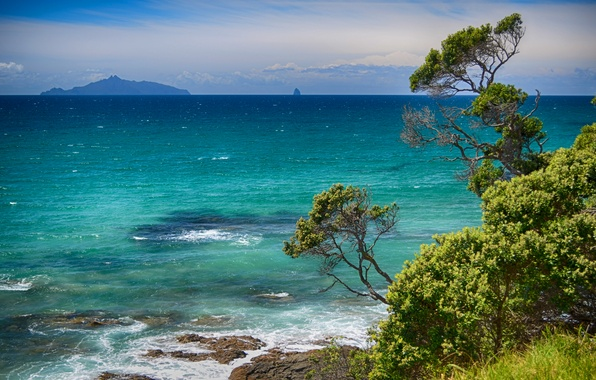 Картинка море, лето, облака, деревья, синева