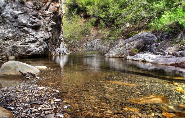 Картинка Вода, Природа, Деревья, Листья, Камни
