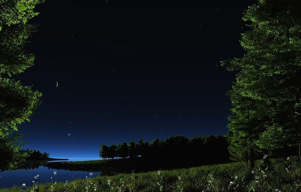 Картинка зелень, небо, трава, вода, звезды, пейзаж, цветы, ночь, природа, озеро, пруд, река, луна, ромашки, растения