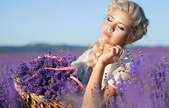 Картинка девушка, природа, корзина, макияж, прическа, блондинка, лаванда, лавандовое поле