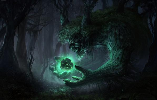 Картинка лес, деревья, ночь, сияние, темно, дух, сфера, art