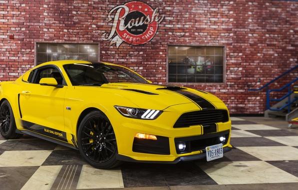 Картинка тюнинг, Mustang, Ford, Shelby, мустанг, форд, шелби, GT350, Roush, 2015, R2300, Blue Oval Edition