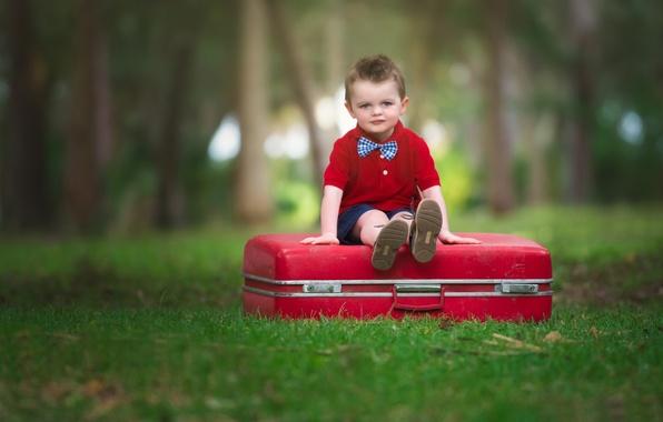 Картинка взгляд, фон, настроение, widescreen, обои, ребенок, мальчик, wallpaper, чемодан, сидит, широкоформатные, background, boy, mood, child, …