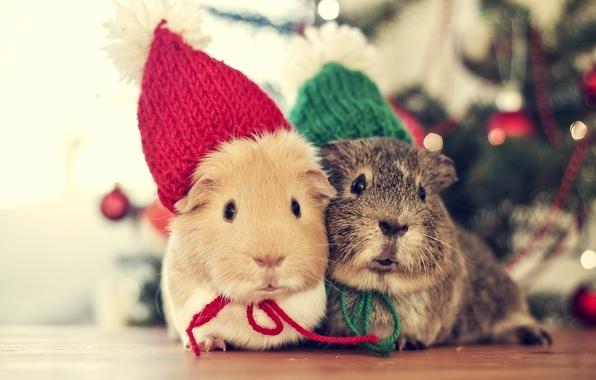 Картинка зима, Love, Дерево, мышь, Рождество, Новый год, Животные, Christmas, Winter, Tree, Vintage, New Year, Holiday, ...