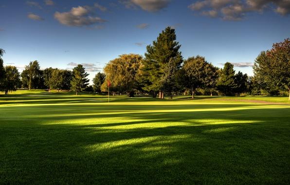 Картинка лето, небо, трава, деревья, природа, поле для гольфа