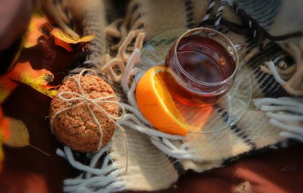 осень плед чай картинки