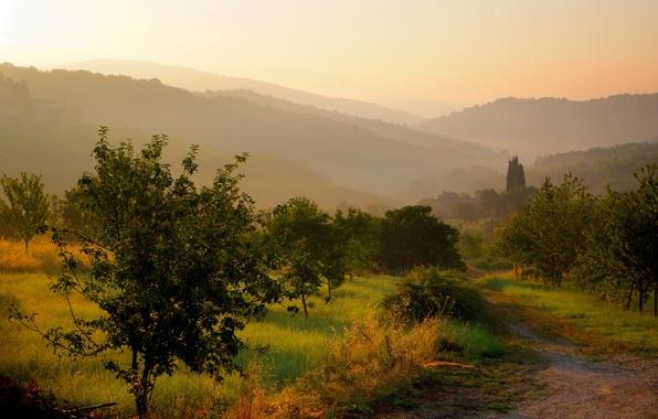 Картинка дорога, трава, солнце, деревья, пейзаж, природа, туман, восход, холмы, утро, Италия, тропинка, Italy, Тоскана, Toscana, …