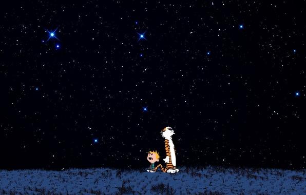 Картинка звезды, ночь, тигр, мальчик, тигра, восторг, кельвин и хоббс