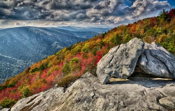 Картинка осень, лес, небо, горы, тучи, камни, скалы, склон