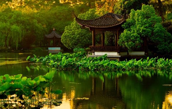 Картинка вода, деревья, пруд, парк, сад, Китай, пагода, лотосы, Ханчжоу, беседки