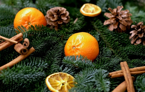 Картинка ветки, праздник, новый год, ель, фрукты, корица, хвоя, шишки, дольки, специи, мандарины