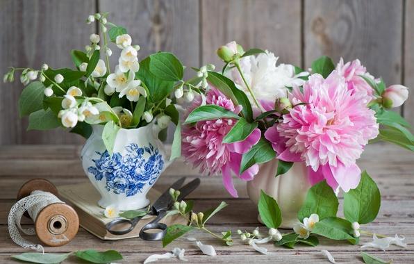 Картинка цветы, пион, жасмин