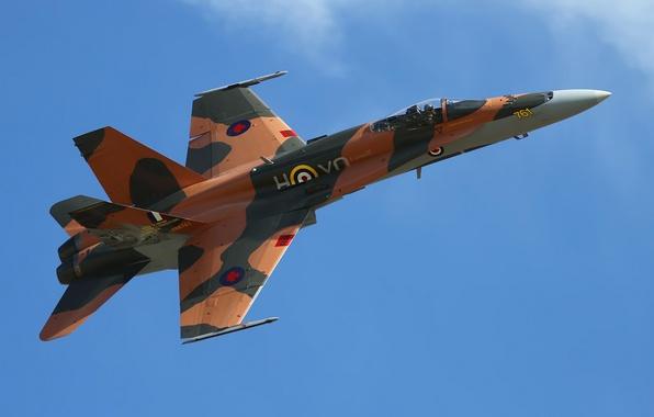 Картинка California, Planes of Fame Airshow, Chino