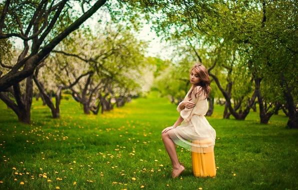 Картинка Apple, Girl, Nature, Grass, Green, Sun, Yellow, Garden, Suitcase