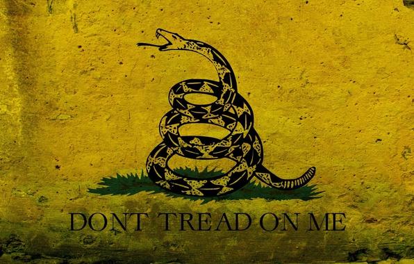 Картинка рисунок, графика, змея, флаг