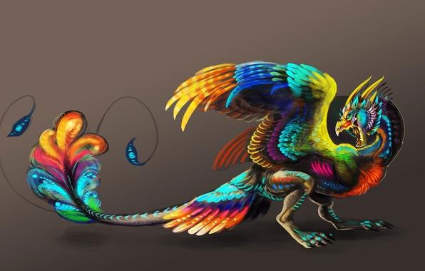 Картинка фон, фантастика, птица, краски, крылья, клюв, арт, хвост