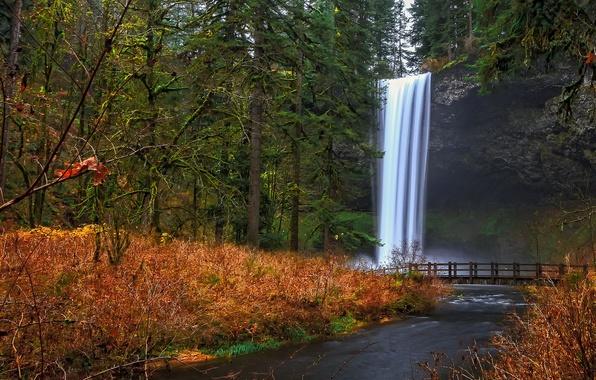 Картинка осень, лес, деревья, мост, скала, парк, река, водопад