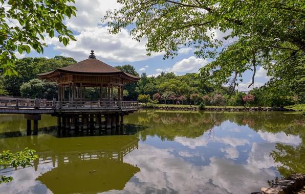 Картинка деревья, пруд, отражение, Japan, беседка, павильон, Ukimido Pavilion, Парк Нара, Nara, Нара, Nara Park
