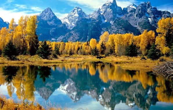Картинка осень, лес, вода, деревья, горы, озеро, отражение, желтое