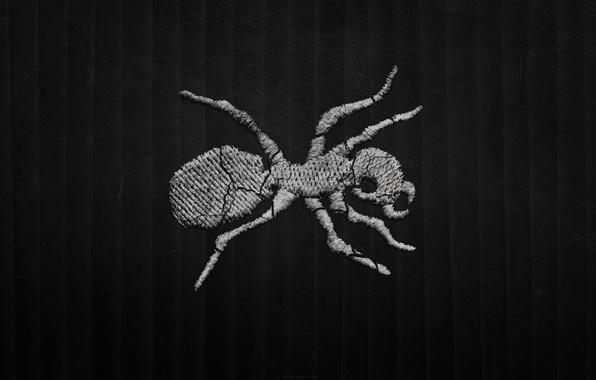 Картинка полосы, темный фон, лого, муравей, Drum and Bass, Techno, The Prodigy, breakbeat, Ant